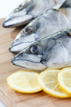 Mackerel - Healthy Eating Diet Advice for Nigerians